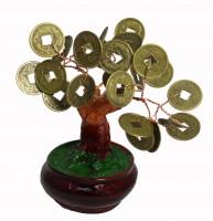 Денежное дерево Арт: DR-120