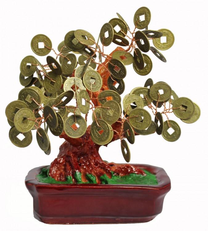 Денежное дерево Арт: DR-122